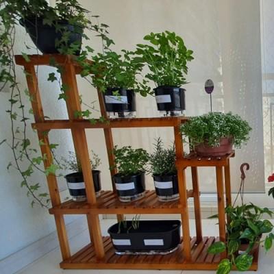 Estante para Plantas modelo 09 Suporte para Plantas, Expositor de Plantas imagem