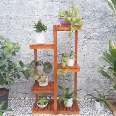 Expositor de plantas modelo 43 imagem