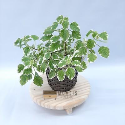Suporte redondo para plantas e decoração imagem