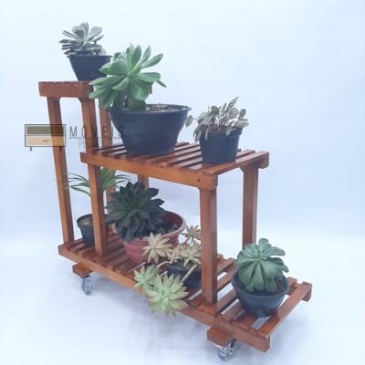 Estante para Plantas suculentas modelo 94 Suporte para Plantas, Expositor de Plantas imagem