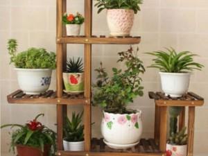 Suporte de Madeira para Plantas